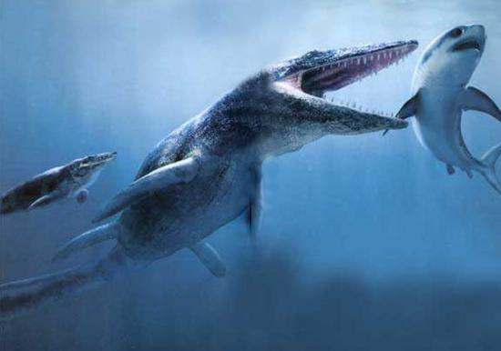 cryptozoology cryptozoologie Créature U-28 serpents de mer Atlantique Nord 30 juillet 1915 Mosasaure Mosasaurus Kronosaure Kronosaurus queenslandicus crocodile marin Crocodylus porosus sous marin