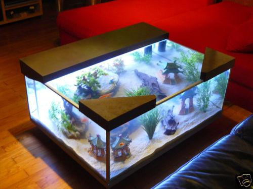 Fabriquer sa table basse aquarium table de lit a roulettes - Fabriquer table basse aquarium ...
