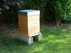 la ruche model voirnot