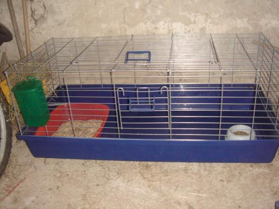 am nager la cage de mon lapin. Black Bedroom Furniture Sets. Home Design Ideas