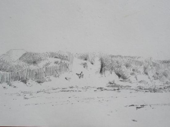 Dunes à Blainville.