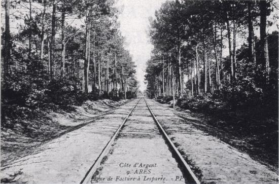 Ligne près d'Arès
