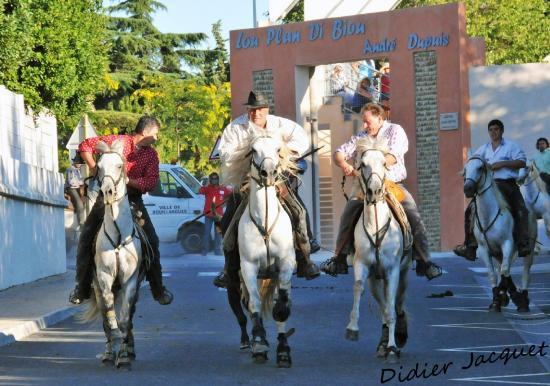 3 cavaliers 1 taureau... Arènes