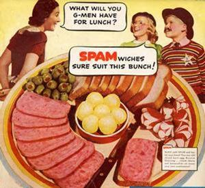 Don't let you website get eaten up by spam.