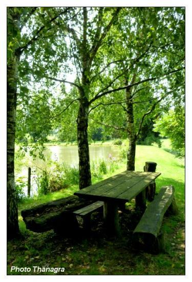 Les étangs du Sundgau.jpeg