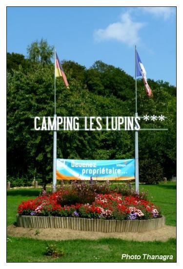 Le camping les lupins.jpeg