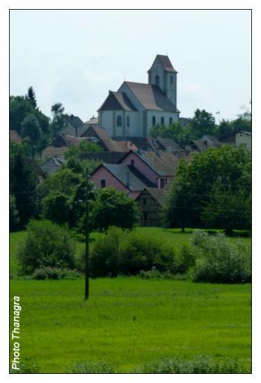De wolfersdorf pfetterhouse for Elever des carpes