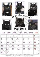 Mai 2011 - A4 - Chats