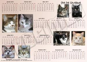 Calendrier SPA A3 - Chats- 2011