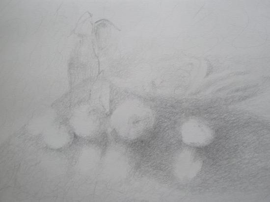 Pommes crayon HB 199?
