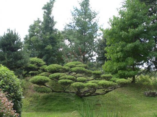 for Entretien de jardins