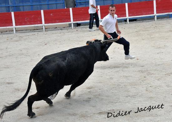 Florent Julien