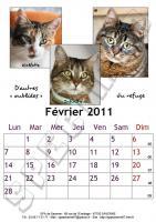 Calendrier 2011 - Février - Chats