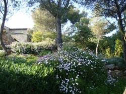 Du fond du jardin, la façade exposée au sud-est de la villa