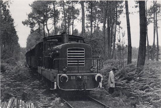 BB 01 en forêt en 1976