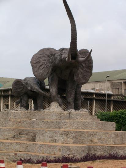 Et voici l'éléphant