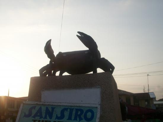 Le Koto symbole de la ville