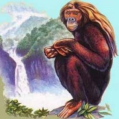 Illustration représentant l'Orang Pendek