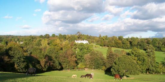 élevage Twyford
