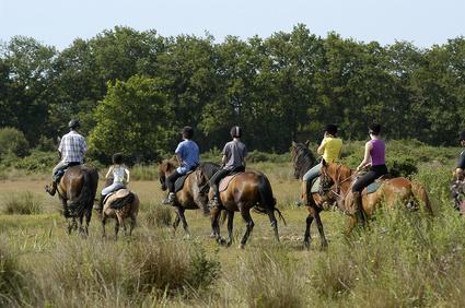 Trouver des partenaires pour faire de l'équitation
