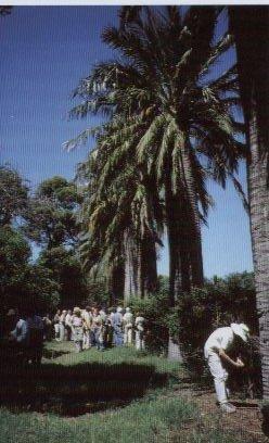 AG Saint Cyprien 2002