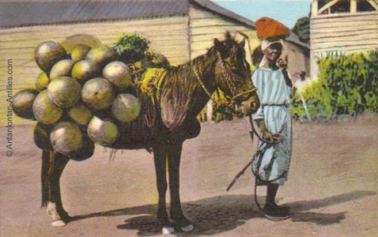 Marchandes de calebasses - Haïti -