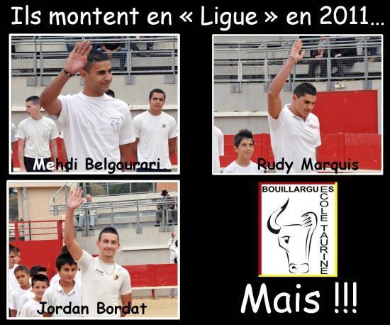 Les montées en Ligue 2011