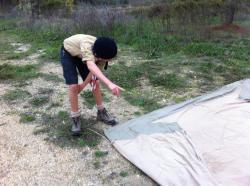 Tanguy pliant notre nouvelle tente