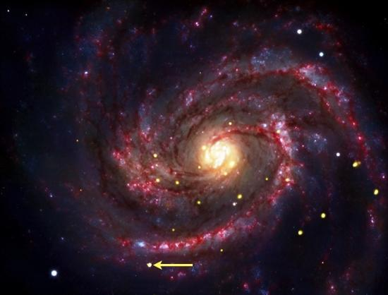 La supernova SN 1979C, dans la galaxie M100, se transforme actuellement en trou noir...