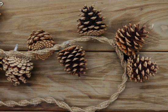 gui naturel décoré boulduc boule de noël éclairage coloré noix