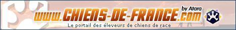 Site sur chiens de FRANCE