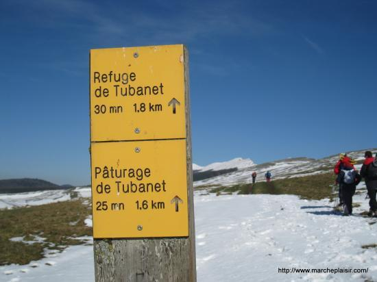 Pâturage de Tubanet 1330 m