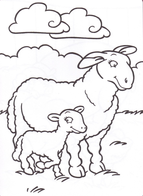 Animaux de la ferme - Mouton en dessin ...