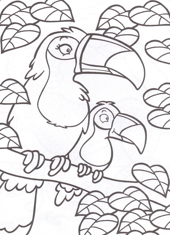 Oiseaux - Coloriage toucan a imprimer ...