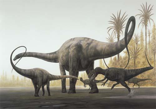 les spcimens de diplodocus sont les seuls dinosaures de trs grande taille dont lensemble