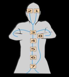 Les huits portes dans le corps humains
