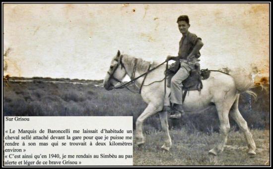 Jeunesse en Camargue
