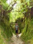 Forêt du Shivapuri  National Park