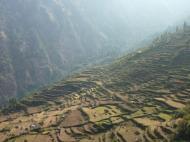 Cultures en terrasses du village de Thulo Syabru