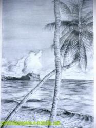 palmier devant la mer en crayon graphite