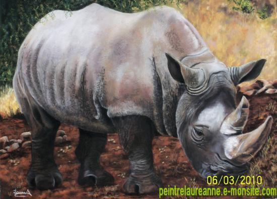 dessin au pastel sec animaux rhinocéros