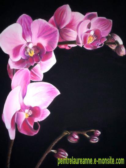 dessin au pastel de fleur orchidée