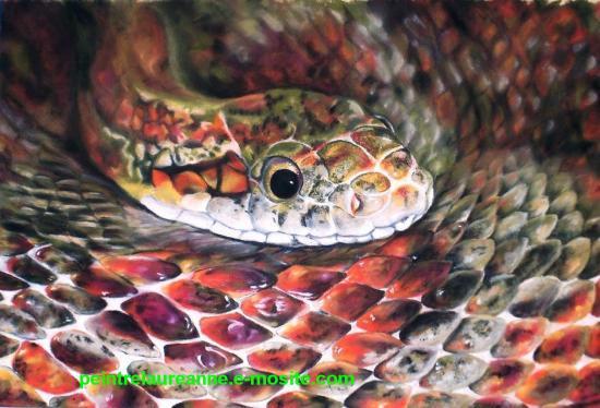 dessin au pastel sec animaux serpent