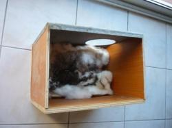 fabriquer clapier a lapin