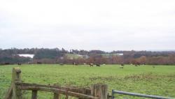 Twyford Farm