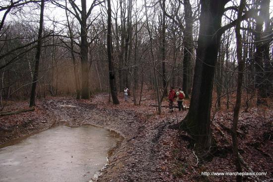 Chemin inondé et gelé