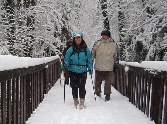 Petit pont de bois à Osny