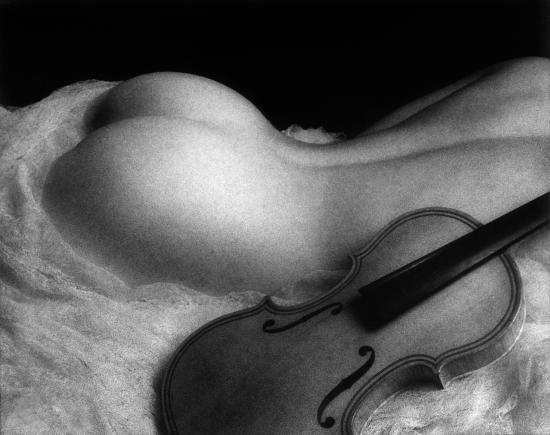 Le violon, dominique tuilard