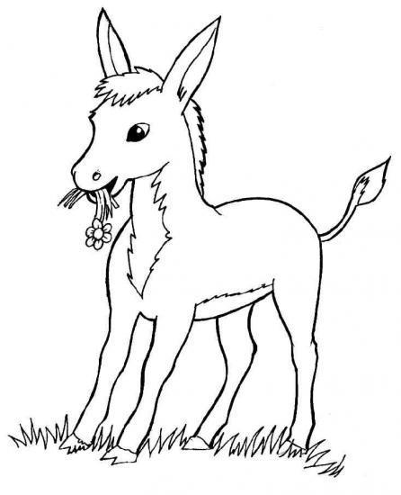 Coloriage gratuit dessin d 39 nes - Dessin profil ...