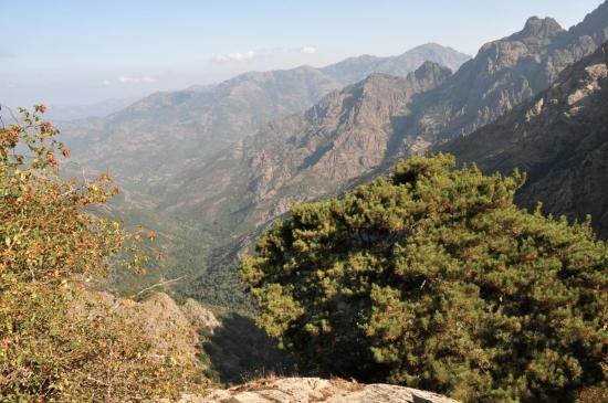 La vallée du Fangu depuis la Bocca di Capronale